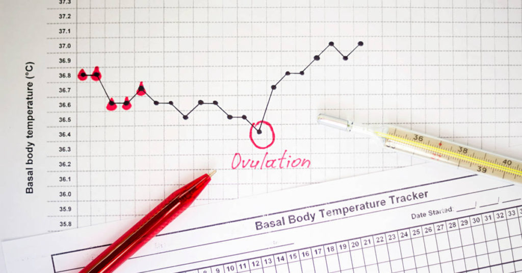 ovulation - when to have sex to conceive a baby